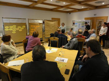 Interactive group discussion led by the INVOLVE project team.